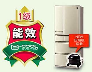 健康省电保鲜 夏普净离子群冰箱品质不凡