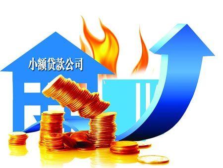 部分小贷公司暂停建材类贷款 行业贷款受阻