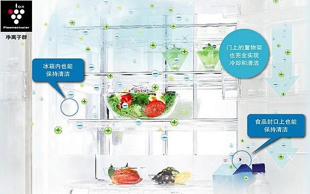 除菌保鲜节能 夏普冰箱主推三大特色