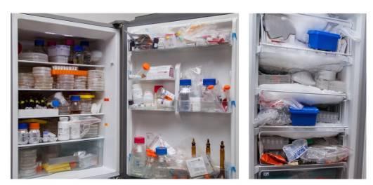 海尔全空间保鲜冰箱被中国农大录取
