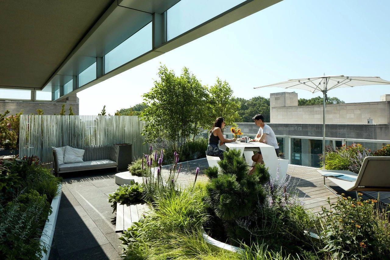 屋顶花园景观