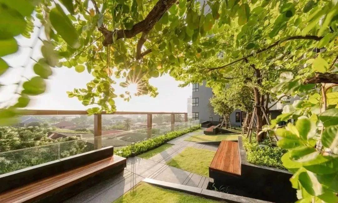 屋顶绿化防水设计