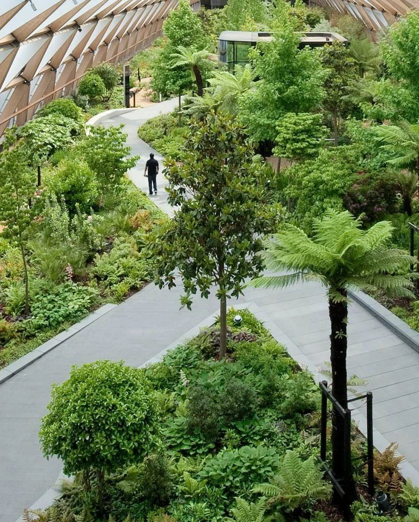 怎样设计屋顶花园