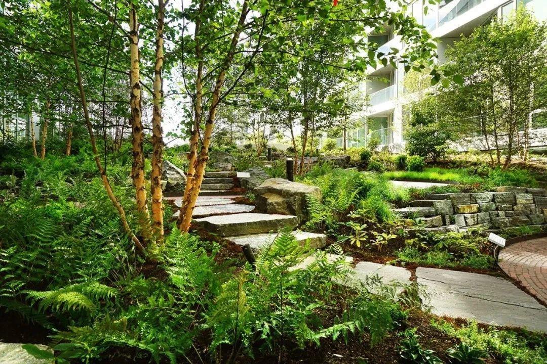 屋顶花园种植区设计